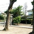 写真: 杉戸町下野集会所のところから撮影4