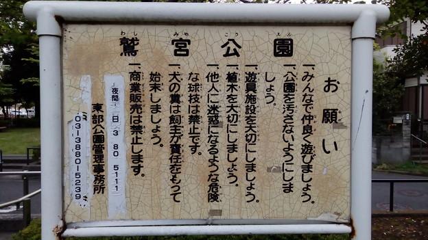 久喜市じゃないけど鷲宮公園(東京足立区)