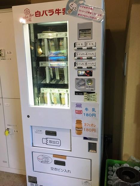 白バラ牛乳の自販機