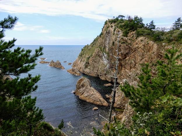 おしろいの断崖と網代展望台