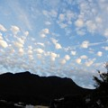 Photos: うろこ雲