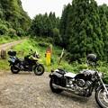 Photos: シワガラの滝(小又川渓谷)への道