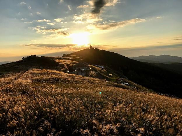 金色に染まる生石高原