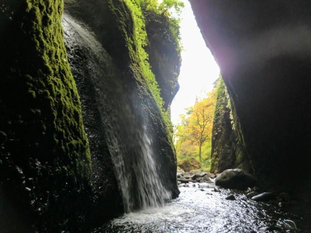 シワガラの滝と紅葉