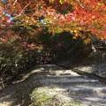 東山公園(たつの市)