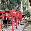Photos: 愛宕神社・山神社・稲荷神社の鳥居