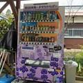 ラベンダーの香る自販機