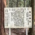 Photos: 青玉神社 案内板