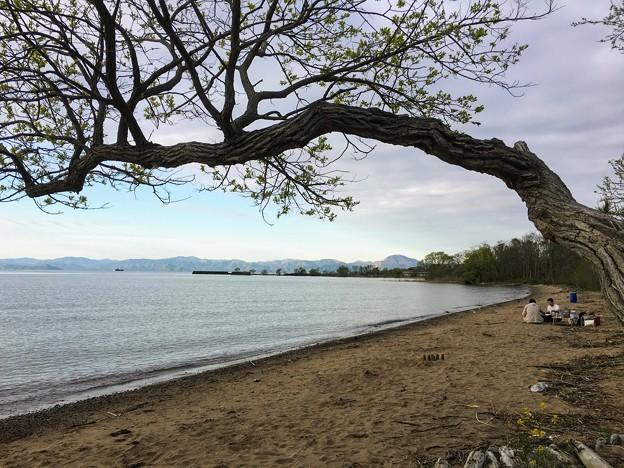 南三ツ谷公園 琵琶湖湖畔
