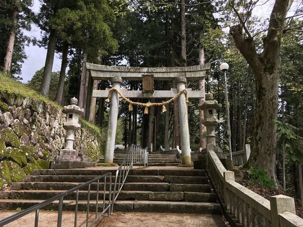 気多若宮神社 参道石段