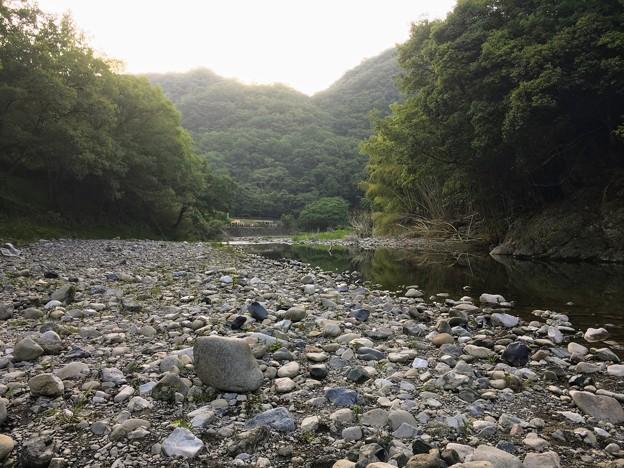 小田川の河川敷