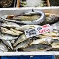 Photos: ぉお(゚ロ゚屮)屮 ひと箱 400円!