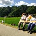 宝蔵寺ひまわり畑の三人娘