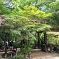 Photos: みたき園