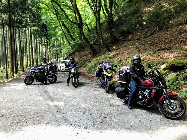 Photos: 赤西渓谷梅雨明けキャンプに参加したメンバー