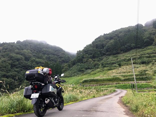上山高原は霧の中