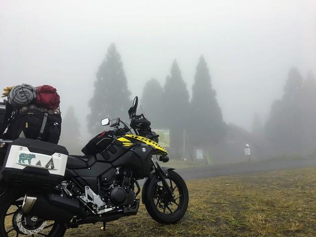 静寂の霧の世界