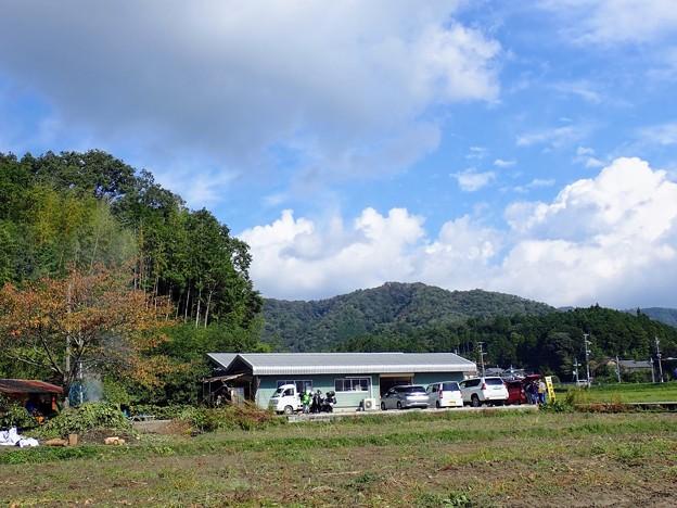 丹波篠山 黒豆畑