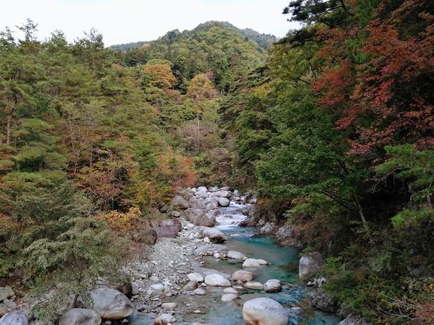 紅葉と与田切川