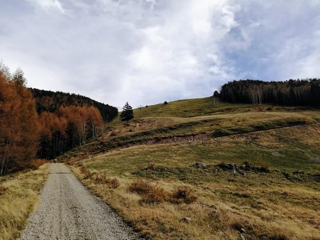農道黒川線をハイキング