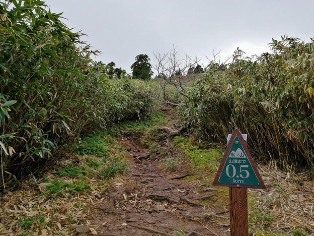 山頂まであと500m