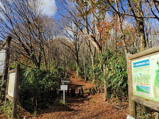 Photos: 大段ヶ平登山口12:15スタート