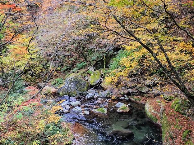 Photos: 横行林道の紅葉