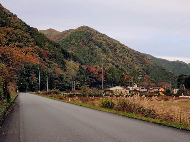 山里にも紅葉が下りてきた