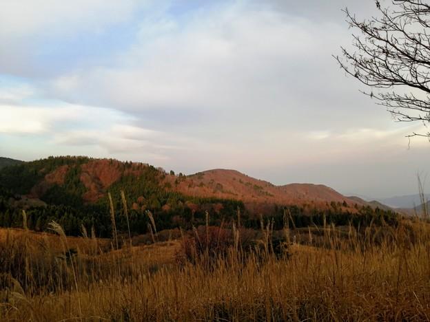 上山高原は紅葉真っ盛り