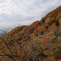 Photos: 紅葉の河合谷林道