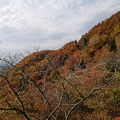 紅葉の河合谷林道