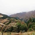 上山高原は雨
