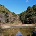 Photos: 猩々池