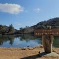 再度公園 修法ヶ原池
