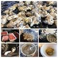 牡蠣ざんまいのキャンプ飯