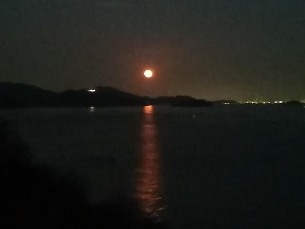 2020年初のムーンロード 月光の道