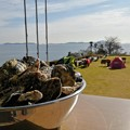 坂越産殻付き牡蠣