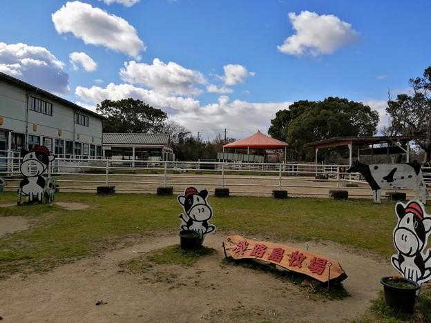 淡路島牧場 撮影スポット