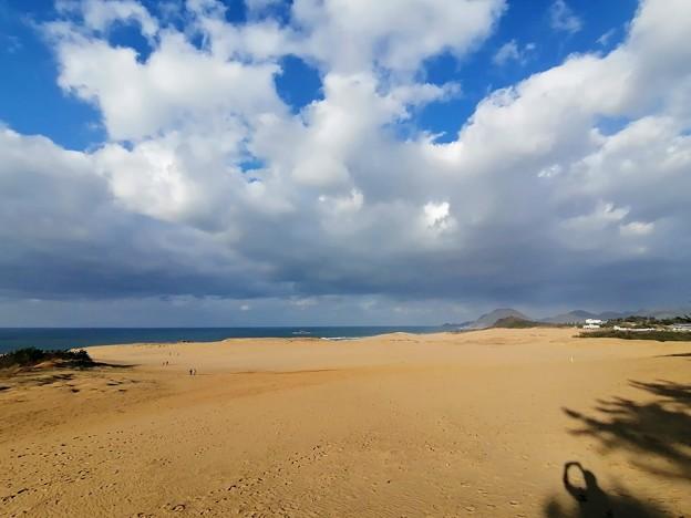 鳥取砂丘の西側は穴場かも