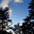 Photos: 気持ちいい林間キャンプ場
