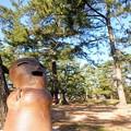 Photos: キャンプ場に何故か埴輪