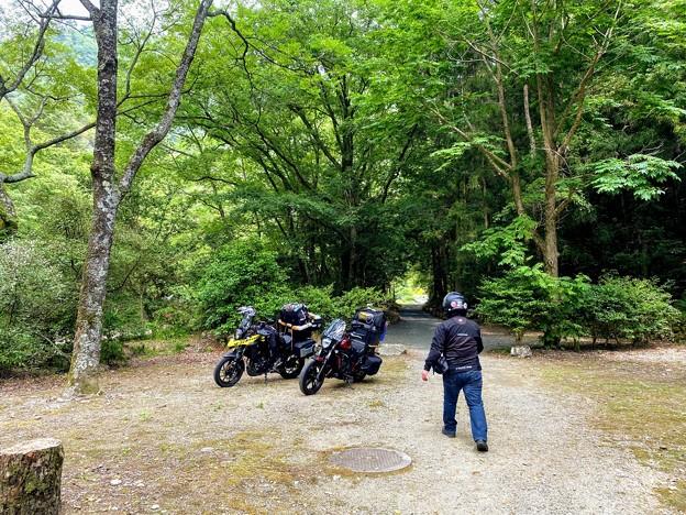 山野峡キャンプ場