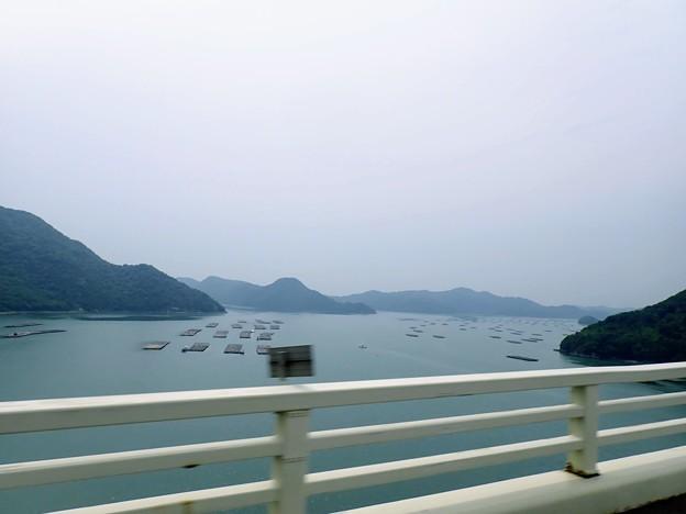 日生の牡蠣筏