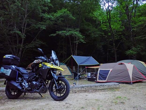 山野峡キャンプ場の朝