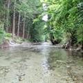 キャンプ場を流れる清流