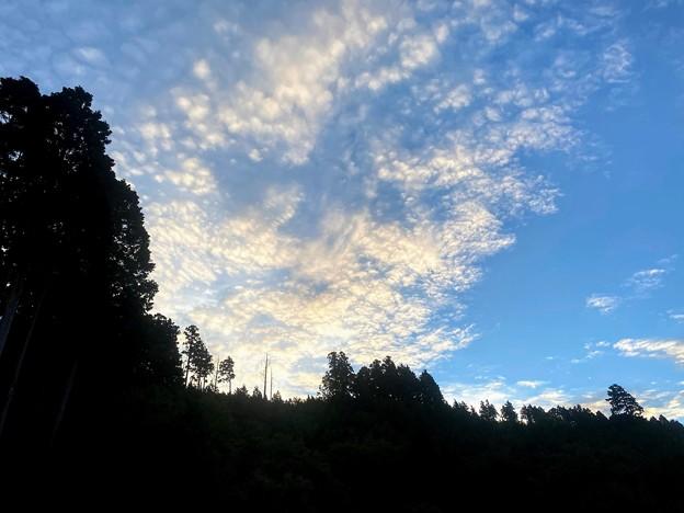 Photos: IMG_2729