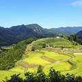 Photos: 美方郡のマチュピチュ