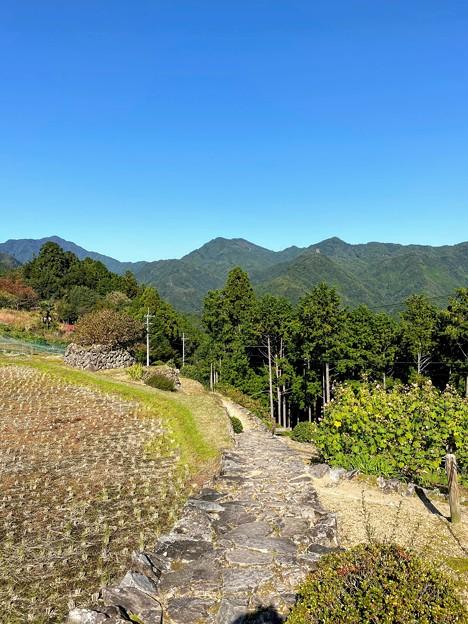 熊野古道 小辺路の石畳