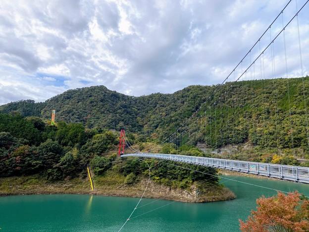 Photos: 椿山レイクブリッジ