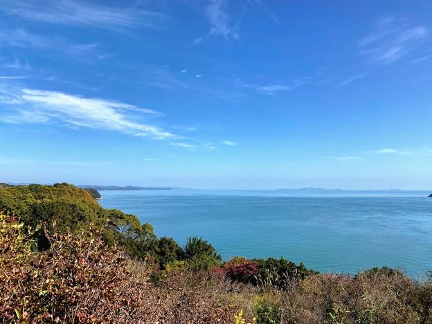 蕪崎園地 展望台からの眺め